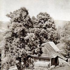 Bucharova stezka v Krkonoších v roce 1931