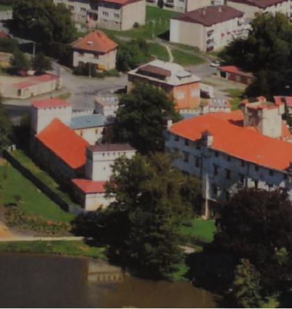 Borský zámek je dokladem vývoje hradní architektury v Čechách