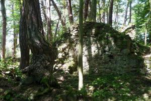 Zříceniny hradu Křikava skrývá lesní porost nedaleko vesnice Černívsko