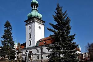 Výstava na zámku přiblíží 80 let vsetínského hokeje