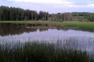 Kokotské rybníky přivítají ochranáře