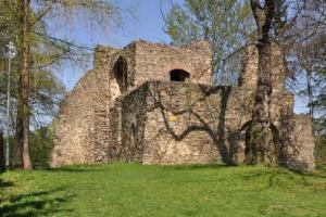 Tvrz ve Svojšicích patří mezi složitější tvrze s obytnou věží