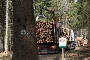 Otevírá se Medvědí stezka na Stožecku, uzavírka na Schwarzenberském kanále trvá