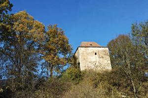 Tvrz Doubravice je jedním z cenných dokladů sídel nižší šlechty