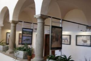 Muzeum Vysočiny Jihlava zve na výstavu Ikony na muzejních arkádách
