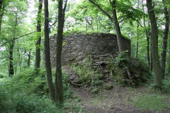 Zřícenina hradu Prácheň stojí na přemyslovském hradišti