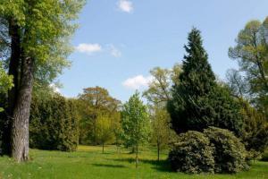 Americká zahrada se nalézá od roku 1828 v Chudenicích