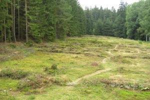 Zaniklá ves Pfaffenschlag leží nedaleko Slavonic