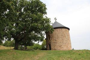 Nejvýznamnější přemyslovské hradiště západních Čech bylo předchůdcem Plzně