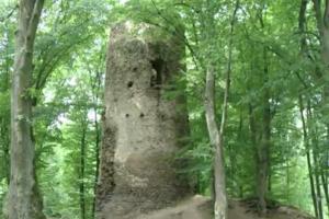 Hrad Chřenovice u Sázavy byl šlechtického založení