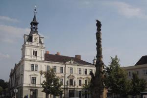 Mariánský sloup je ozdobou Tyršova náměstí v Chocni