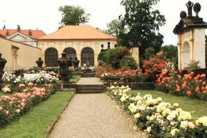 Růžová zahrada je ozdobou zámku v Děčíně