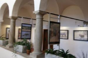 Muzeum Vysočiny Jihlava zve na výstavu s názvem S fotoaparátem za humny